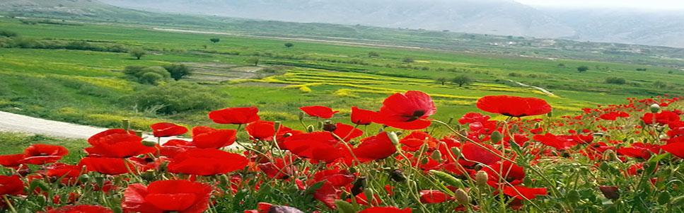 طبيعت خوزستان
